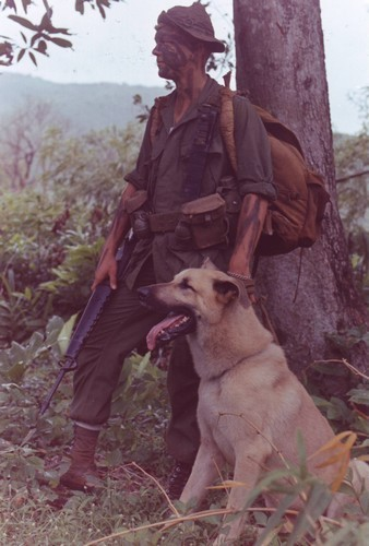 "Lance Corporal Ralph McWilliams stands with his scout dog ""Major""."